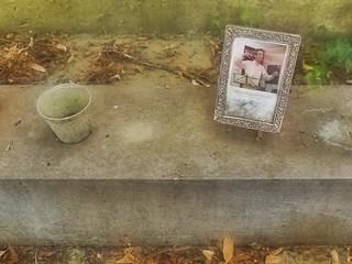 Detail 1: Grave of Vincenz Maria Rauch, died 17-year-old - Friedhof Kalksburg