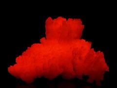 South African Manganoan Calcite -  UVc (someHerrings) Tags: calcite manganoan