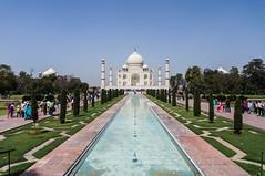 Taj Mahal (Postcard)