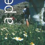 Llibres Capafonts003 copia