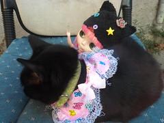 Raya, Sabby, and Sabby's new collar!! <3