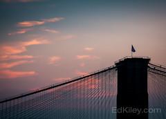 Elegance (Ed Kiley) Tags: nyc bridge sunset icon brooklynbridge nyclandmarks nycbridges