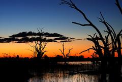 (Dylan9191) Tags: lake scenery fujifilm x20 barmera lakebonney