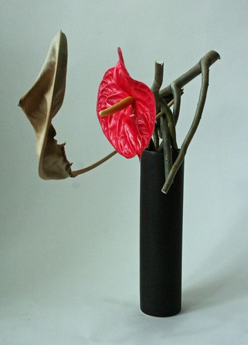 Side View of Hanakubari with Anthurium,Willow, and Dried Strelitzia Leaf