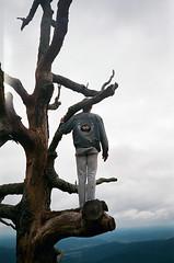 sean (Jacob Seaton) Tags: camping trees boy man mountains tree forest nationalpark woods rocks hills shenandoah skylinedrive tazz seanseaton