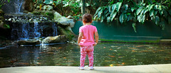 KL Bird Park (sengkenitz) Tags: bibi mylovely iklima lilydamia abenoor sengkenitz daliahana