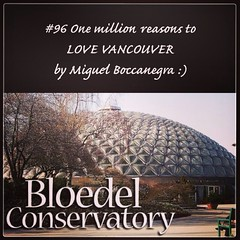 | no.96 | | Bloedel Conservatory | (onemillionreasonstolovevancouver) Tags: world city people tourism home promotion vancouver cool realestate profile today cambie queenelizabethpark l4l vancity bloedelconservatory downtownvancouver metrovancouver onemillion cityofvancouver vancouverite vancouvercity vancouvertourism vancouverrealestate vanone awesomevancouver instaphoto instagood instafollow uploaded:by=flickrmobile flickriosapp:filter=nofilter miguelboccanegra thegreatervancouverarea