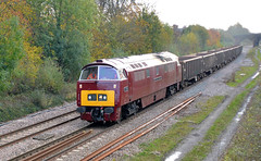 D1015 Western Champion at Great Bowden (robmcrorie) Tags: modern train diesel main great champion rail railway loco trains line western british locomotive enthusiast railways railfan freight midland midlands d1015 bowden