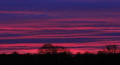 deep pink lines (litla) Tags: morning pink november autumn red sky lines clouds sunrise canon dawn glow herbst 85mm himmel wolken sonnenaufgang mystic violett norddeutschland morgenstimmung 60d schlewsigholstein