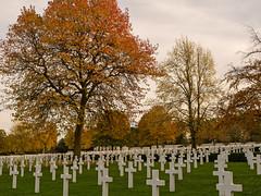 American Cemetery (davepickettphotographer) Tags: cambridge cemetery remember american remembrance cambridgeshire wargraves secondworldwar remembrancesunday madingley americancemeterycambridge americancemeterycambridgeuk