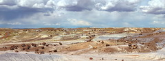 Pastel Forest (Aerogami.com) Tags: arizona southwest clouds forest canon desert painted petrified