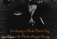 Im Having a Flickr Black Day, click the link below to sign the petition!