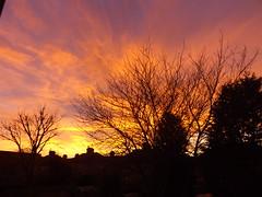 Sunset (lcfcian1) Tags: sunset shadow sky orange sun house tree silhouette night purple dusk