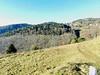 au dessus de MUNSTER  69  les VOSGES,  Beaute et Paysages de notre belle France, Guy Peinturier (GUY PEINTURIER) Tags: vairessurmarne beautedefrance guypeinturier bellefrance paysagesdefrance peinturierguy