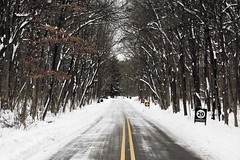 Entrance Road Wright Woods and Pond Depth of Winter 1118 (www.cemillerphotography.com) Tags: snow cold forest illinois cool skiing hiking freezing windy frosty piercing arctic trail crisp shivery polar icy preserve breezy lakecounty subzero nippy bracing keen numbing subfreezing