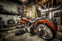 Rick's Ride (Frank C. Grace (Trig Photography)) Tags: bike work ride harley workshop harleydavidson motorcycle fixing hog tuneup