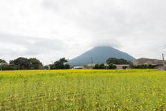 (GenJapan1986) Tags: travel flower japan landscape kagoshima     25mm  2014    nikond600 zf2 distagont225