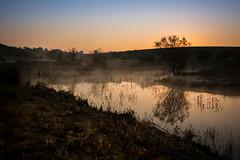 Morning has broken II (Flavio~) Tags: fog night sunrise negev pura lonelytree ruhama surnrise rehovotphotographyclub israeltal