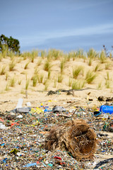 Worst and best of human being ((Virginie Le Carr)) Tags: ocean atlantic pollution paysage plage atlantique ocan mares