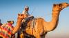Deserts and Camels 131107 17_16_02 (Renzo Ottaviano) Tags: race al desert united racing course emirates camel arab lorenzo races camels corrida emirate deserts uniti renzo unis arabi carrera corsa emirati unidos camellos chameaux árabes kamelrennen صحراء سباق arabes ottaviano camelos emiratos emirados vereinigte arabische cammelli émirats الهجن هجن سباقات المرموم marmoun
