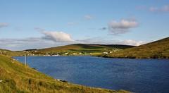 Olnafirth IMG_3152 (Ronnierob) Tags: voe shetlandisles olnafirth