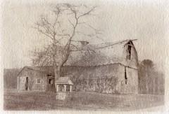 Stone's Barn Nº 2, Toned Van Dyke print (efo) Tags: barn vandyke altprocess hampton connecticut bw film seleniumtoned olympusom4t