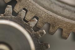 gears (Marc McDermott) Tags: gears metal macromondays madeofmetal mesh machine teeth two industrial macro