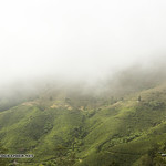 Beautiful Cameron Highlands - tea and flower capital of Malaysia thumbnail