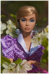 "Poppy Parker ""She's Not There"". (Glimmer O'Bright) Tags: there shes integrity collectibledoll poppyparker"