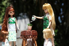 In the Garden 01 (Licca-chan) Tags: autumn amy jasmine gloria honey licca
