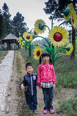 Even the flowers aren't real here (Stinkee Beek) Tags: erin taiwan ethan taichung nantou swissgarden nantoucounty renaitownship