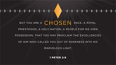 But you are a chosen race, a royal priesthood, a holy nation, a people for his own possession, that you may proclaim the excellencies of him who called you out of darkness into his marvelous light. --1 Peter 2:9 http://bit.ly/13VloYT #BibleStudy #VerseO (LogosBibleSoftware) Tags: church technology 5 tools study software bible christianity logos resources