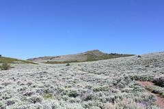 I wonder where I can find some sagebrush (rozoneill) Tags: road blue sky mountain oregon hiking lakes peak plush warner valley wetlands antelope hart refuge wsweekly34