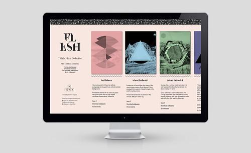 flesh-example_640