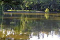 Lake Reflection (bbic) Tags: summer lake lac reflets vara bucharestbotanicalgarden