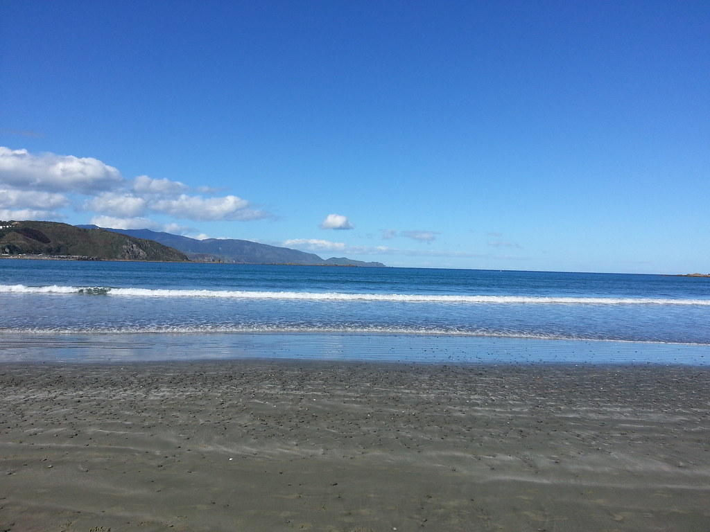 Lyall Bay