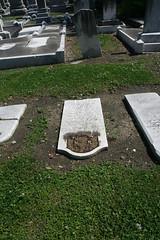 Weinberg stone on the ground