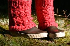 IMG_5369 (out4mud) Tags: socks nokia hai