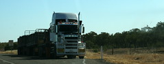 TSV-ISA 438 (harry de haan) Tags: road train nt australia outback roadtrain onderweg harrydehaan tsvisa