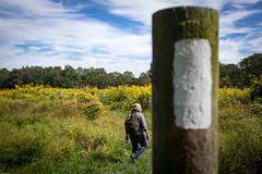 The Anniversary Hike (schamis) Tags: woods hiking pennsylvania walk michelle hike pa trail tylerarboretum canon5dmarkiii canonef40mmf28stm
