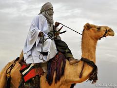 Knights of Sahara ! (Bashar Shglila) Tags: sky sahara colors clouds veil desert culture tradition libya camels ly tuareg  darj     ghadamis   mygearandme mygearandmepremium mygearandmebronze mygearandmesilver mygearandmegold Potd:country=menaen
