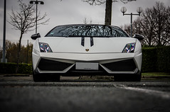 An angry bull (TheCarspots Photography) Tags: paris cars canon eos photos picture lamborghini gallardo rasso 550d performante canoneos550d