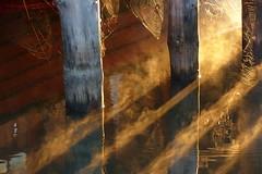 Sunny morning in August   ,          sooc (evisdotter) Tags: morning nature water reflections spiderweb sunny mariehamn åland spindelnät sooc speglingar naturkonst sjökvarteret vanagram mygearandme mygearandmepremium mygearandmebronze mygearandmesilver mygearandmegold mygearandmeplatinum mygearandmediamond