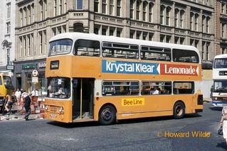 Bee Line 684 (YDS 651S)