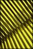 Diagonales cruzadas (Sergio2R Photography) Tags: diagonales cruzadas huescar