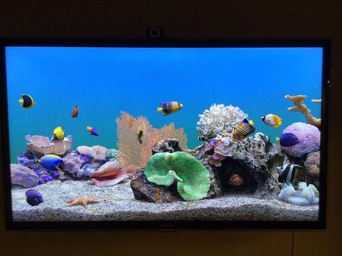 Virtual fish