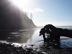 P1250078 (benguernsey) Tags: ocean cliff beach oregon pacific astoria cannonbeach oswaldwest shortsands traveloregon