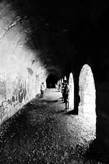 Camino (Aguilera Zulantay) Tags: chile santiago blancoynegro luz arbol arte retrato guitarra cara personas perro reflejo caras tunel mirada oscuridad chileno chilena cajondelmaipo grfiti