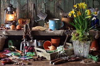 Tales from the Potting Shed