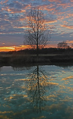 On the River Bank... (John Ibbotson (catching up!)) Tags: sunset reflection water river lincolnshire brigg